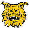 Ilves_hockey